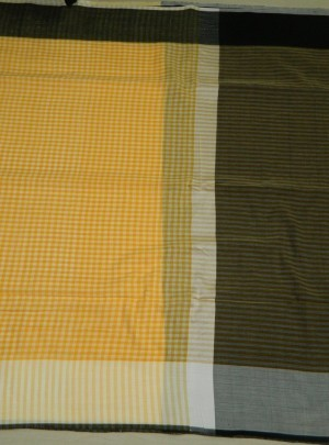 3757 Gamcha Check Cotton Saree